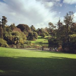 Botanic Royal Gardens, Melbourne, Australia.