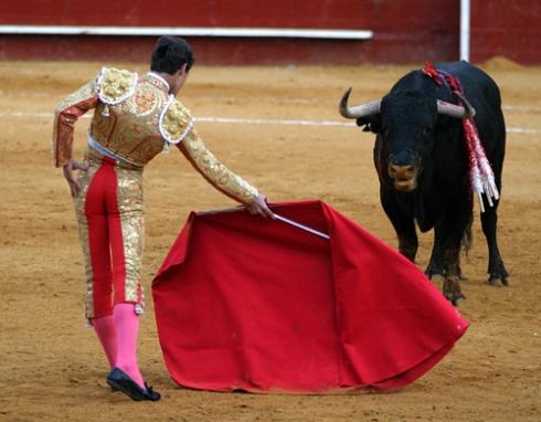 bullfight-bsp-23708306-500x390
